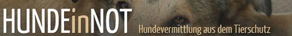 hunde-in-not.com Banner