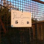 Hundegehege Schild