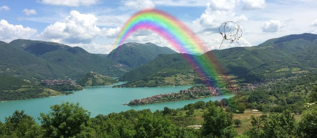 regenbogen_eigen_1